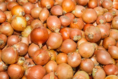 Dry onions at  local food market Royalty Free Stock Photography