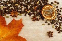 Dry orange on wooden background. royalty free stock photography