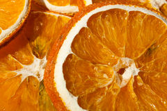Dry Orange Decoration Royalty Free Stock Photo
