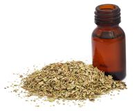 Dry oregano and essential oil. In an amber bottle Stock Image