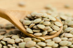 Dry Organic green Lentils Royalty Free Stock Images