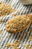 Dry Organic Indian Basmati Rice. Ready to Cook royalty free stock image