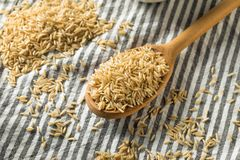 Dry Organic Indian Basmati Rice. Ready to Cook royalty free stock photos