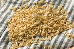 Dry Organic Indian Basmati Rice. Ready to Cook stock images