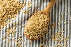 Dry Organic Indian Basmati Rice. Ready to Cook stock photos