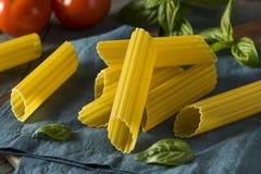 Dry Organic Manicotti Pasta Tube Stock Photography