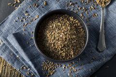 Dry Organic Tarragon Seed Spice Stock Image
