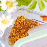 Dry osmanthus Royalty Free Stock Photography