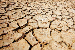 Dry out earth Royalty Free Stock Image