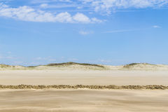 Dry over wet sand  and dunes in Cassino beach Royalty Free Stock Images