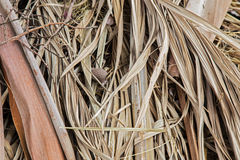 Dry palm leaf background Stock Photography