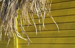 Dry palm leaves of the hut roof yellow background texture Asie Stock Photography
