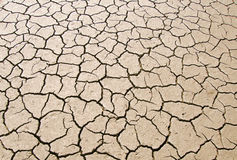 Dry parched earth Stock Image
