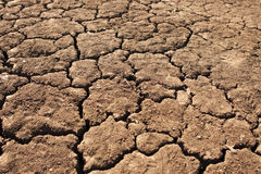 Dry, Parched Earth Royalty Free Stock Images