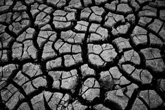 Dry, Parched Land Stock Photography