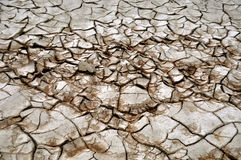 Dry and parched stock images