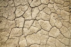 Dry Parched Textured Death Valley Ground Royalty Free Stock Images