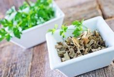 Dry parsley Royalty Free Stock Photos