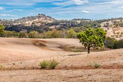 Land affected by drought in the Upper Hunter Valley, NSW, Australia royalty free stock photo