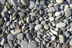 Dry pebbles. In sunlight on the beach Stock Image