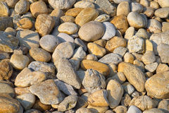 Dry pebbles at morning light Royalty Free Stock Photography