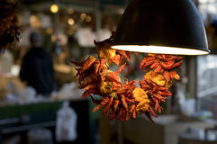 Dry peppers. Necklace of dry chili peppers is hanging under a hot lamp at Pike Market, Seattle Stock Photos