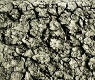 Dry period Stock Image