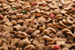 Dry pet food as background,. Closeup view stock image