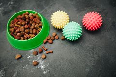 Dry pet food in bowl royalty free stock photos