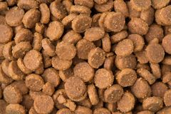 Dry pet food close-up. Dry food for cats and dogs royalty free stock image