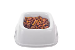Dry pet food in a plastic  bowl Stock Photo