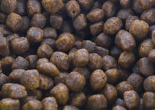 Dry pet food texture Stock Images