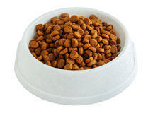 Dry pet food in a white bowl Royalty Free Stock Images