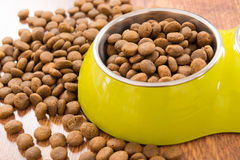 Dry pet's food Stock Photography