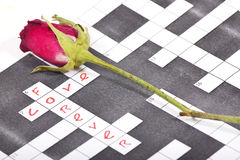 Dry pink red rose on a crossword paper Royalty Free Stock Images