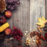 Dry plants and fruit still life on a wooden table, view from the. Top of the dried berries of coffee on vintage board stock images