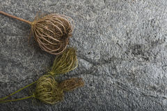 Dry plants on stone background Royalty Free Stock Photos