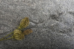 Dry plants on stone background Royalty Free Stock Photography