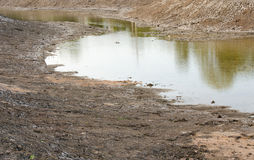 Dry pond Royalty Free Stock Images