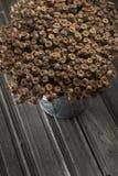 Dry poppyheads Stock Photo