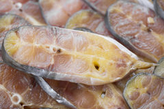Dry preserved Striped catfish in market. Royalty Free Stock Image