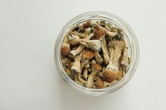 Dry psilocybin mushrooms in glass jar on white background. Psychedelic, mind-blowing, magic mushroom.