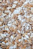 Dry pumpkin seeds Royalty Free Stock Images