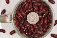 Dry red beans in a glass mug and Indian rupees. Healthy food rich in vegetable protein. Nutritionists around the world recommend eating dishes of wild red rice Royalty Free Stock Photo
