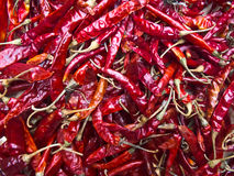 Dry red chili pepper. Background Stock Photography