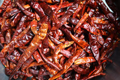 Dry red chili pepper Stock Photos