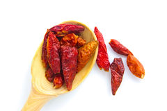 Dry red chili pepper herbs in bamboo spoon isolates on white. Background royalty free stock photography