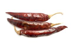 Dry red chili pepper Stock Images