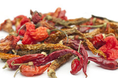 Dry red chili peppers Stock Photography