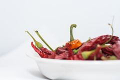 Dry Red chili peppers. In a bowl Royalty Free Stock Photography